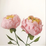 Paper Peony workshop with Petal and Bird