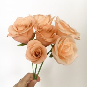 paper peach roses by petal and bird
