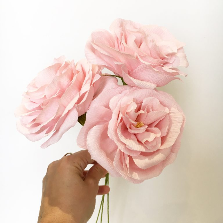 paper roses by Petal and Bird