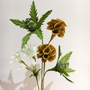 thistles, astrantia and scabiosa seed pods